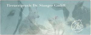www.tierarzt-sindelfingen.de