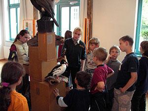 Kinder zusammen mit Heike Rothe beim Beschauen der ausgestopften Vögel