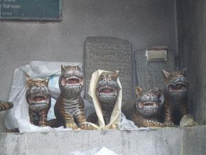 虎の子もお腹を空かせて。。。