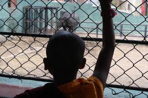 初めての動物園に興奮!