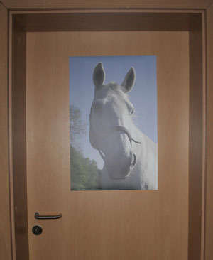 Pferdeposter
