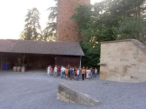 Fledermausführung auf Burg Neipperg