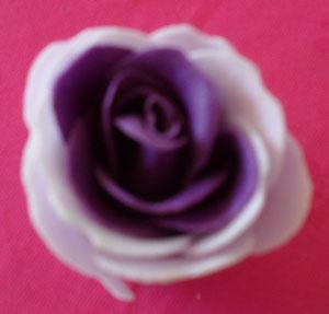 20 petali