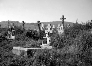 Cmentarz w Grabiu. Fot. Dominik Księski