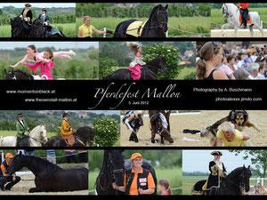 Pferdefest Mallon - Fotocollage