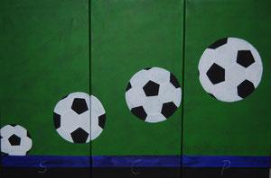 für einen Fussballfan des SCP  2010