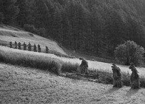 Bild von Ursula Fuchs-Hofer