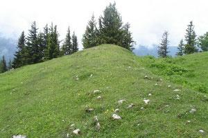 Schönkahler Wall