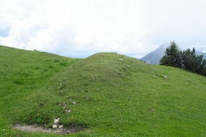 Schönkahler