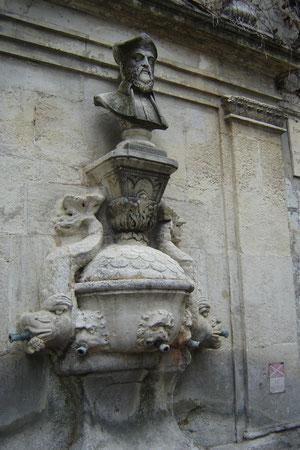 la fontaine Nostradamus, non loin de sa maison natale