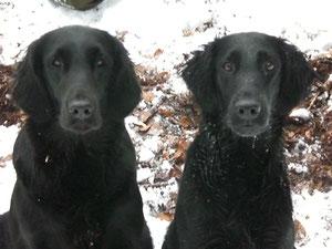 Lisa rechts, links Schwester Jolena