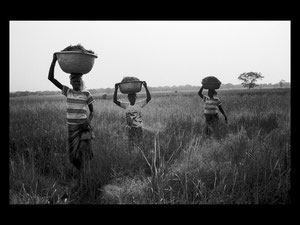 Burkina Faso Pays Senoufo