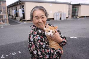 仮設住宅でネコと一緒に過ごす