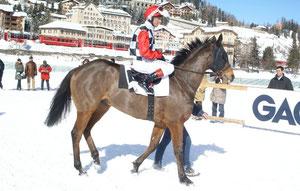 Vlavianus mit dem Star-Jockey L. Dettori im GP Gübelin 2010 in St. Moritz