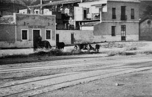Estampa de los inicios de El Marino