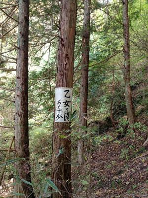 乙女の滝ルート表示