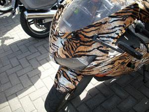 Pussy Bike