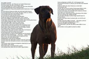 By Karla M.Bertram-frei übersetzt von Carolin Zimmermann