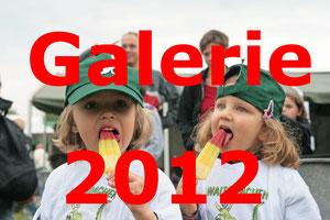 Klicke auf das Bild, um zu den Bildern aus 2012 zu gelangen