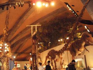 巨大恐竜はO2分子の仕業か?県立自然史博物館