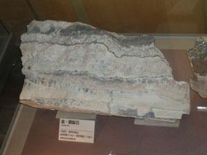 これは県立自然史博物館に展示されている群馬県片品村根羽沢金山の金鉱石金含有量72g/tです。世界一の菱刈金鉱山42g/tを上回るものです。