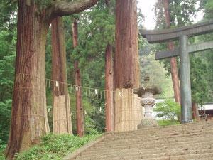 群馬県バワースボット妙義神社
