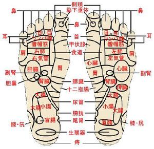 足裏にはたくさんのつぼがあります(足つぼ図参照)。足裏のつぼは全身の各器官や機能につながっています。足裏に黒鉛シリカからの強力な遠赤外線放射と微量な放射線からの-イオンを与えることにより、血行を促進させ、各器官を活性化し、病状改善、健康維持、人間が本来持っている自然治癒力を高めるなどの効果があります。