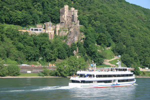 ドイツのライン川下り 古城はホテルに改造されています。
