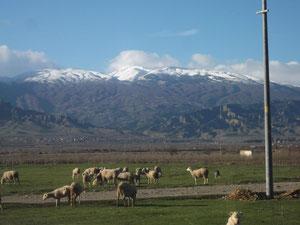 Ekrem Durmaz, Yesilova Köyü, Bozdag