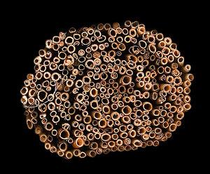 Aufgerollte, in Stücke geschnittene Bastmatte (325 Halme)