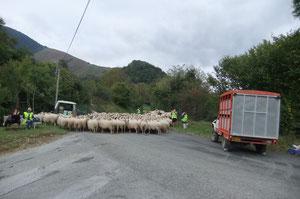 Pose au Cap de Bouchet, sur la Route du Col de Bouésou