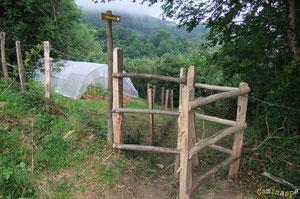 N°1/ Le Chemin de Bourdieu-Bilboquet est plein de nouveautés : la traversée aménagée le long de la Propriété Bourdieu, un petit bijou de sentier, laissez-vous guider !