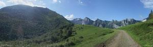 Bleu, Vert, Blond :  le Col de Bergout, ciel bleu du matin, verdure printanière et vaches à la robe blonde ...