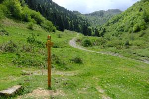 Scellement renforcé à cause du bétail (Plateau de Labrénère)