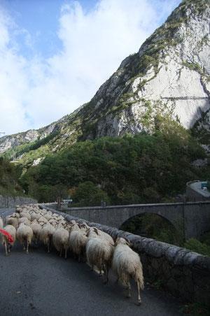 Suspendu dans la falaise, le Chemin de la Mâture de 1772