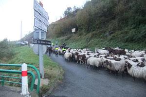 Enfin une route tranquille par Escot, Lurbe, Eysus, Soeix !