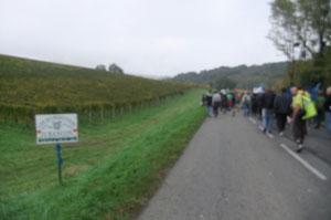 Des vignobles de Jurançon menacés par la bande des 300 m
