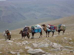Caravane de portage a chameau