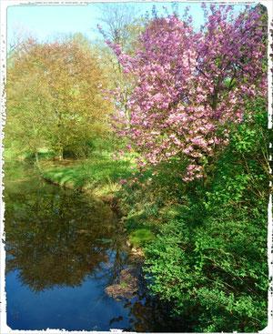 Marie Gabrielle- Wortkunst Blog (Vom früh erhofften Frühling)