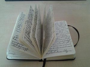 L'agenda dove ho raccolto tutti i miei appunti