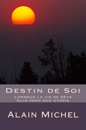 Destin de Soi - version livre 29.50 euros