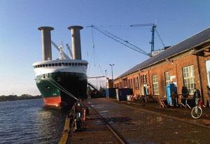"""Abbildung 12: """"E-Ship 1"""" bei der Cassens Werft (Foto Dr. Wild)"""