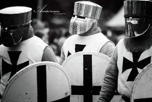 http://www.teutonic-order.fr/