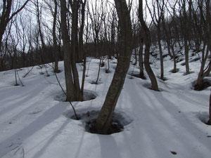雪面の光と影が美しい