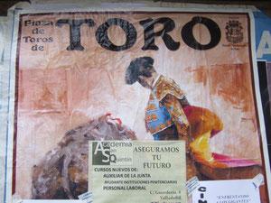 Der Tod des Stiers in TORO