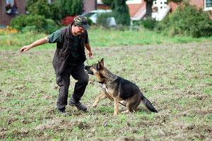 Nach erfolgreicher Fährte freut sich der Hund und der Chef!!!!!