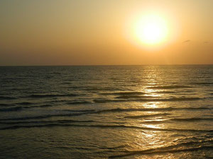 18:45 風波でモモぐらいにはなってましたが、纏まらない波でした。