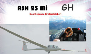 Auch eine schöne Seite zum Thema ASH25     www.ash25mi.com