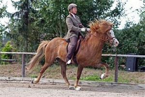 Steffi Gehrts, Islandpferdereiterin mit Leib und Seele