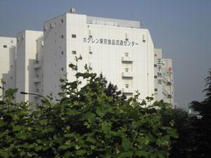 東京入国管理局 住所